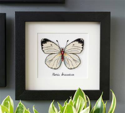 Witte vlinder