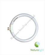 12W Naturalight Ronde TL Buis