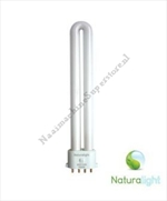 13W Naturalight TL Buis 4 pins